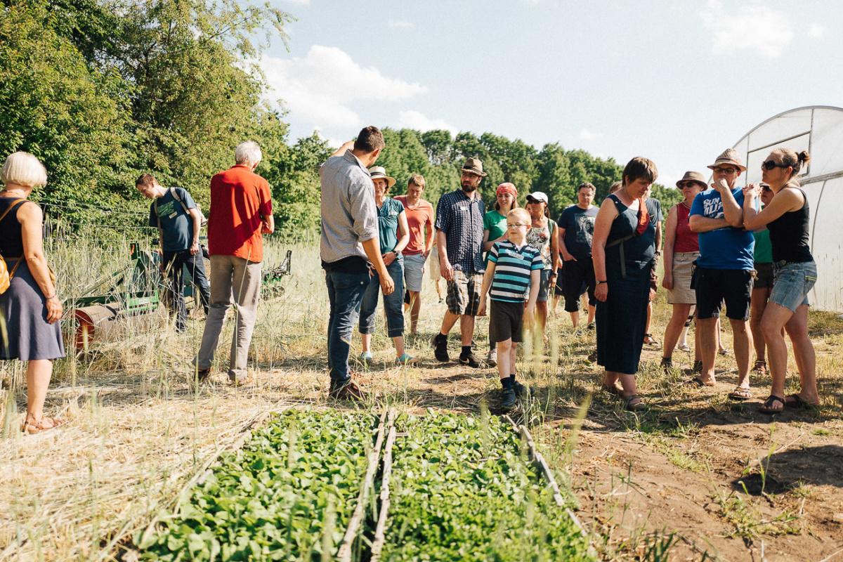 Lerne mehr über den Anbau von deinem Gemüse.